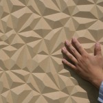 FACETS HS, Close – Up i RAW MDF